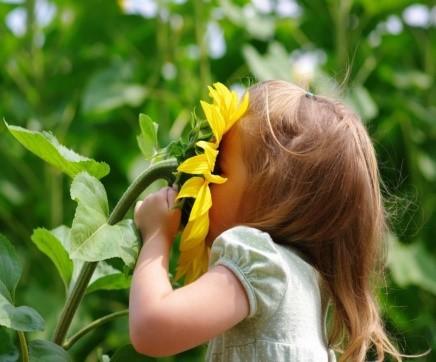 5 zabaw dla dzieci na lepszy węch: żeby świat pachniał pięknie ...