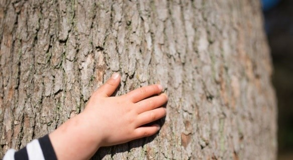 Rozwój dziecka: trening zmysłu dotyku | Mamotoja.pl